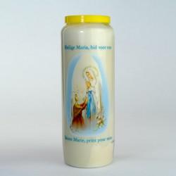Carton 20 neuvaines ND Lourdes