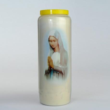 Carton 20 neuvaines Ste Vierge